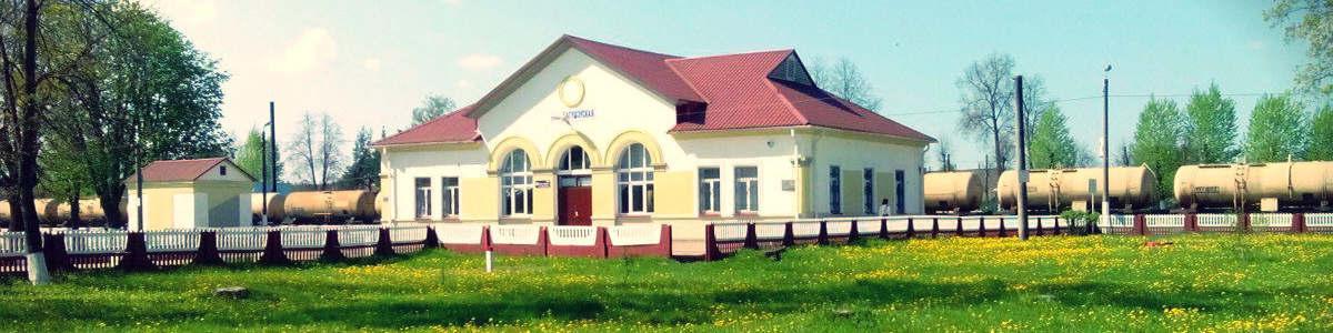 Ж/д вокзал Минск = Богушевск такси