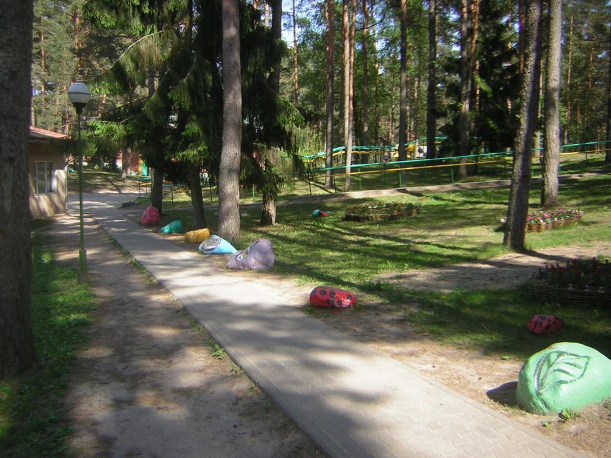 Такси Минск Санаторий Налибокская пуща